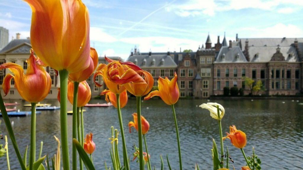 Vakantie in eigen land: 5 tips voor hofstad Den Haag