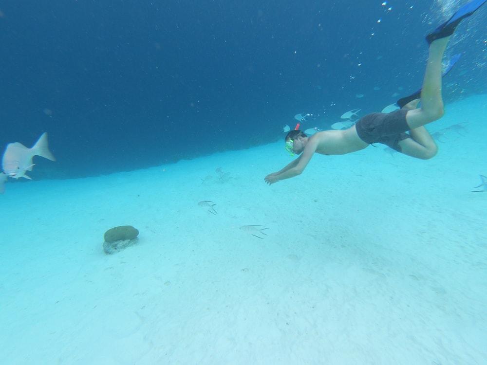 Snorkelen op Curaçao – De mooiste snorkelplekken van het eiland