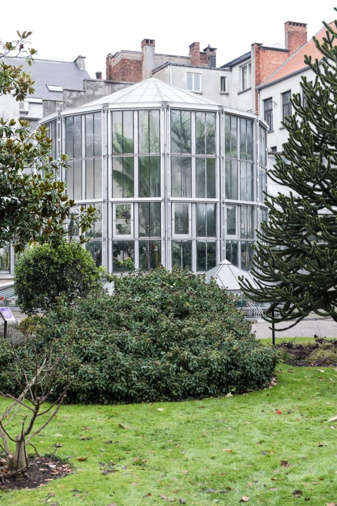 Botanische Tuin Antwerpen