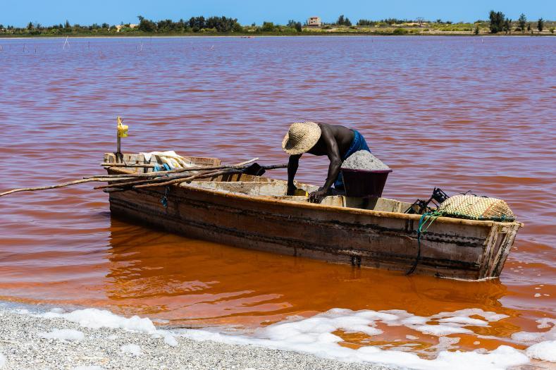 Roze meer Senegal