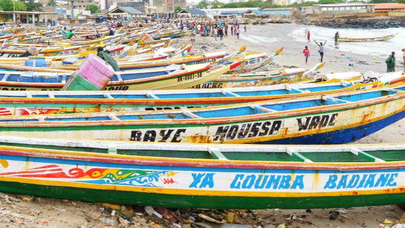 5 redenen voor een vakantie naar Senegal