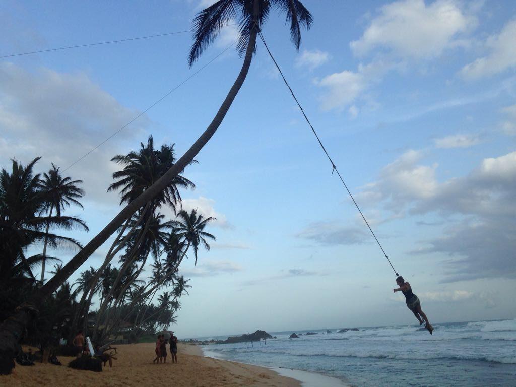 Highlights en bezienswaardigheden van Sri Lanka