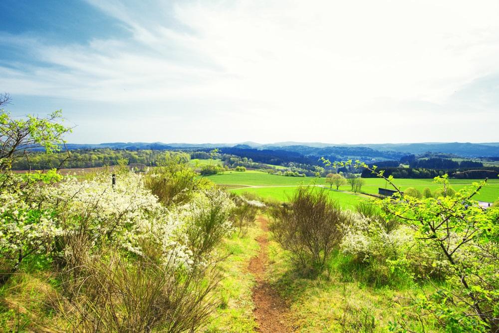 5x de mooiste natuurgebieden in Duitsland volgens Parkvakanties