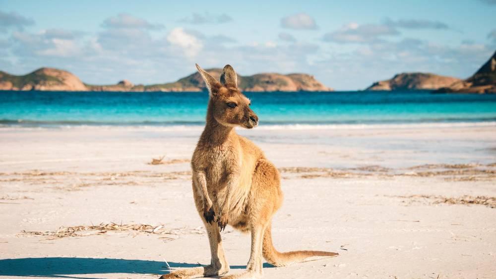 Handige checklist voor als je gaat backpacken door Australië