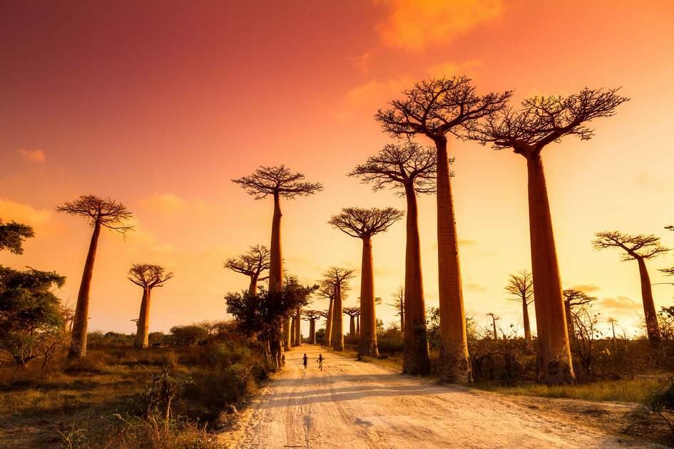 Beste reistijd Madagascar – Alles over het klimaat en weer