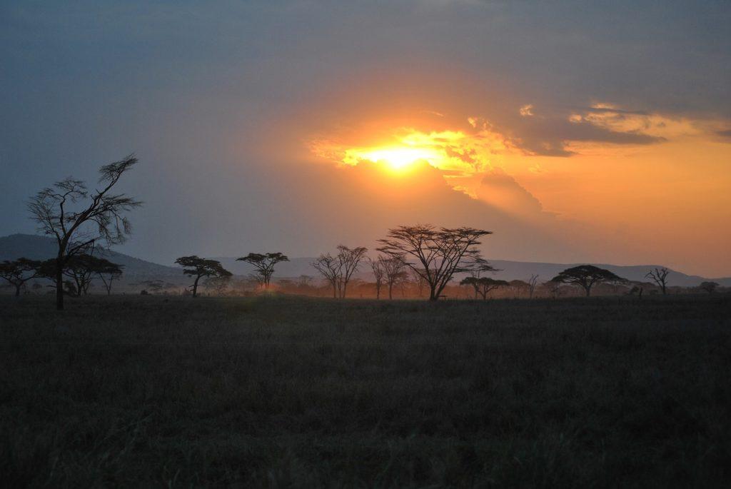 Top 4 bezienswaardigheden in Tanzania die absoluut een bezoek waard zijn!