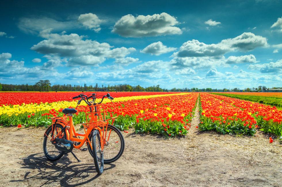De leukste regio's voor een midweek weg in Nederland